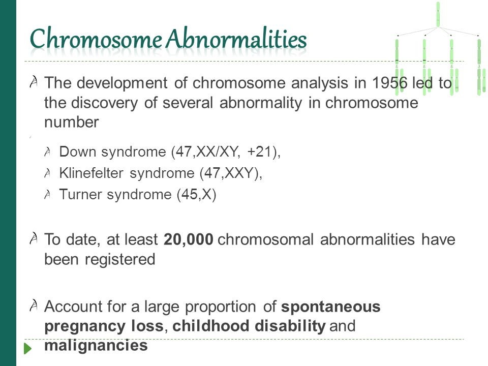 The development of chromosome analysis in 1956 led to the discovery of several abnormality in chromosome number Down syndrome (47,XX/XY, +21), Klinefe