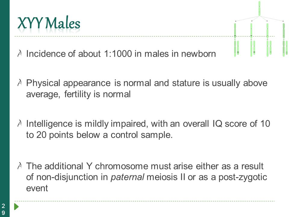 29 Incidence of about 1:1000 in males in newborn Physical appearance is normal and stature is usually above average, fertility is normal Intelligence