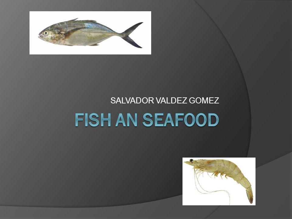 SALVADOR VALDEZ GOMEZ