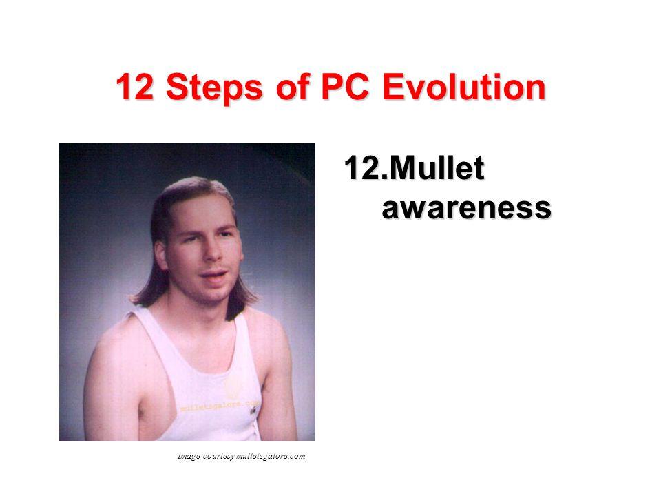 12 Steps of PC Evolution 12.Mullet awareness Image courtesy mulletsgalore.com