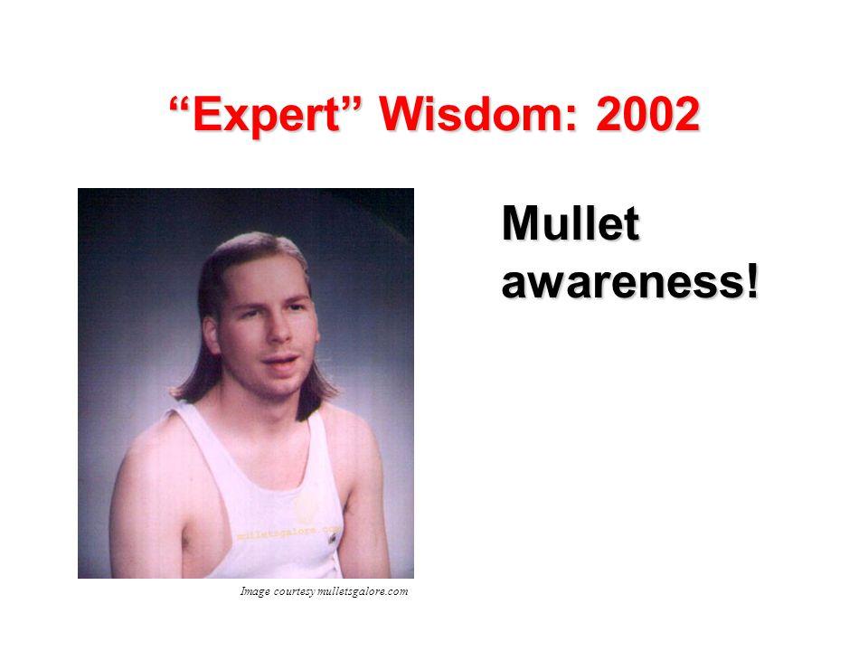 Expert Wisdom: 2002 Mullet awareness! Image courtesy mulletsgalore.com