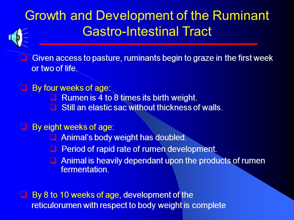 Growth and Development of the Ruminant Gastro-Intestinal Tract Diet Milk OnlyHigh HayHigh Concentrate Concentrate fed, kg/day0.452.27 Live body weight
