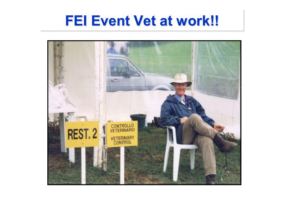 FEI Event Vet at work!!