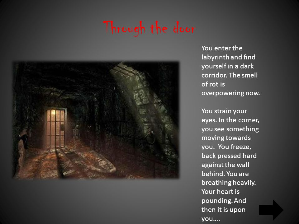 Through the door You enter the labyrinth and find yourself in a dark corridor.