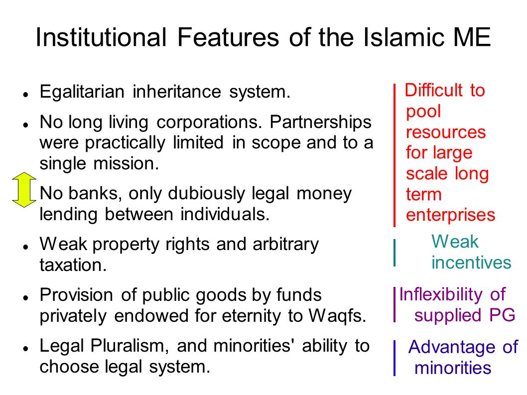 Institutional Features of the Islamic ME Egalitarian inheritance system.