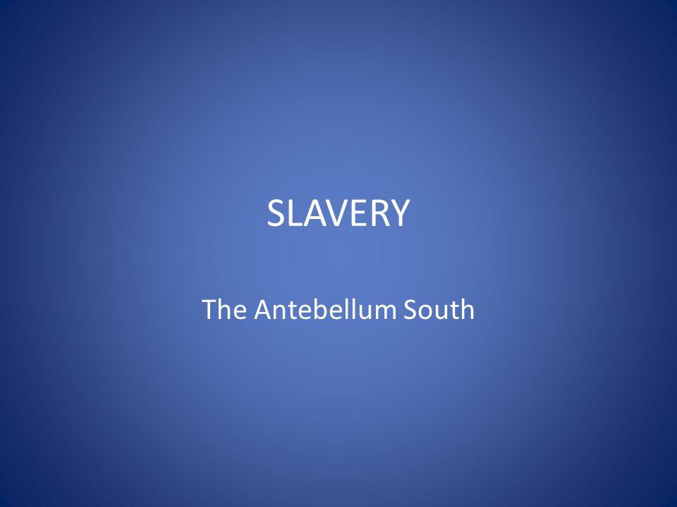 SLAVERY The Antebellum South