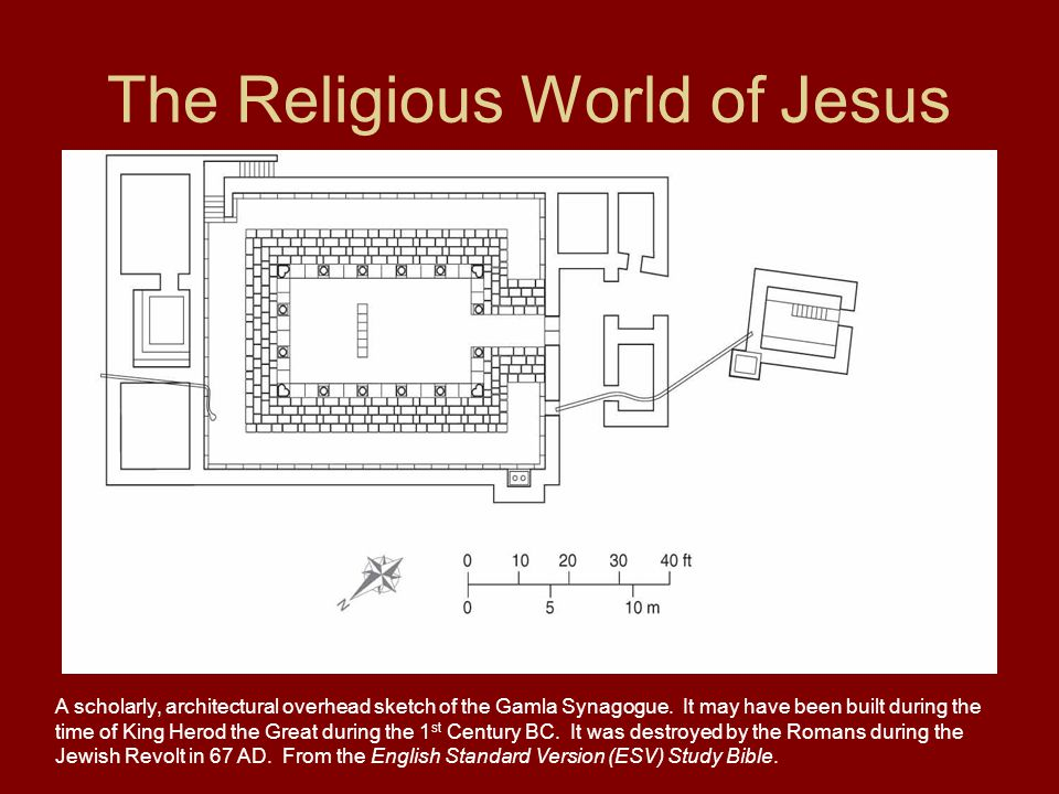 The Religious World of Jesus A scholarly, architectural overhead sketch of the Gamla Synagogue.
