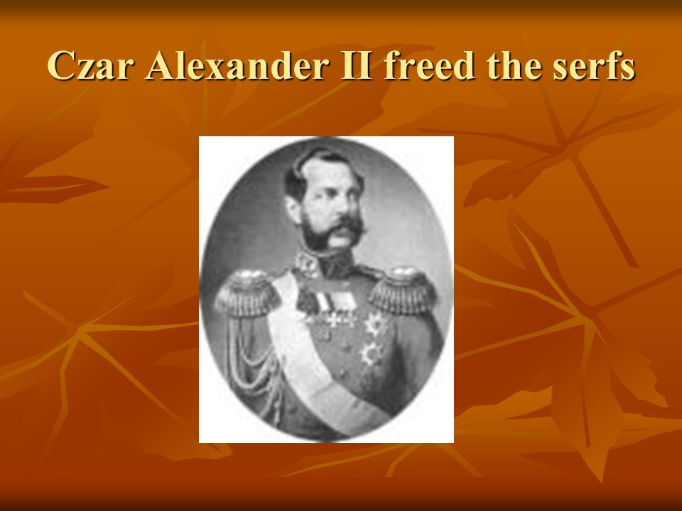 Czar Alexander II freed the serfs