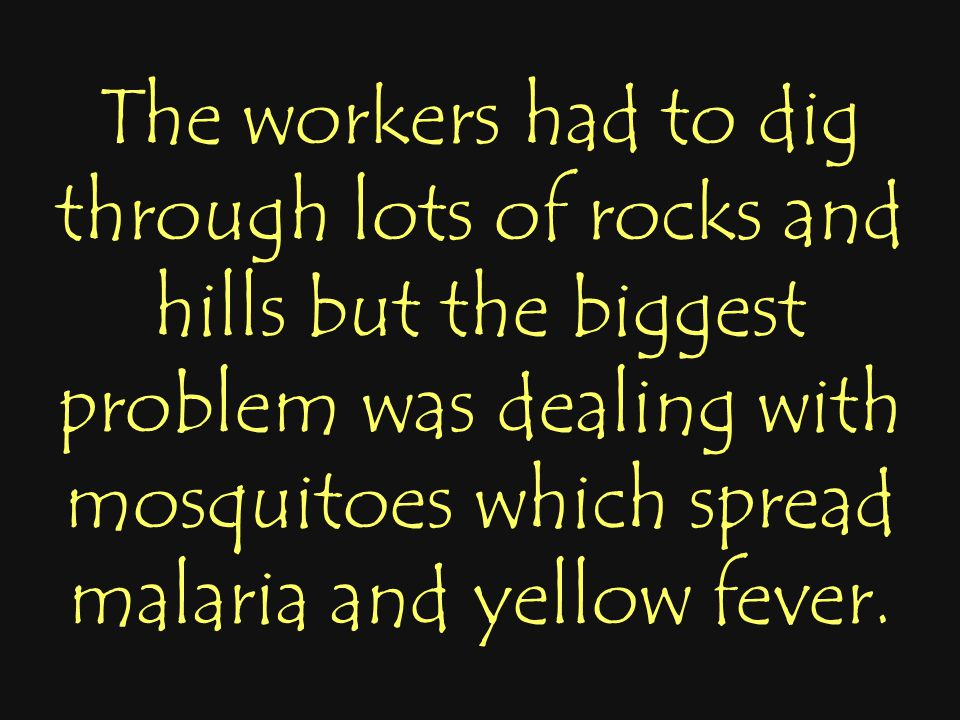 The workers had to dig through lots of rocks and hills but the biggest problem was dealing with mosquitoes which spread malaria and yellow fever.