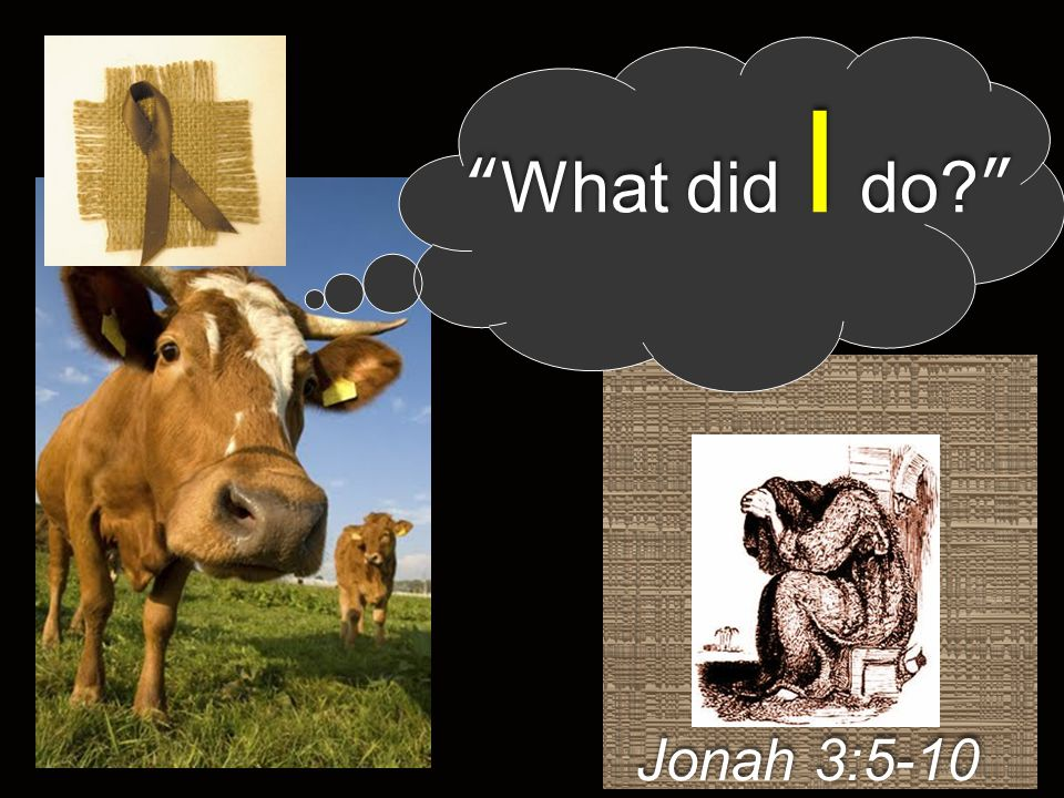 What did I do Jonah 3:5-10