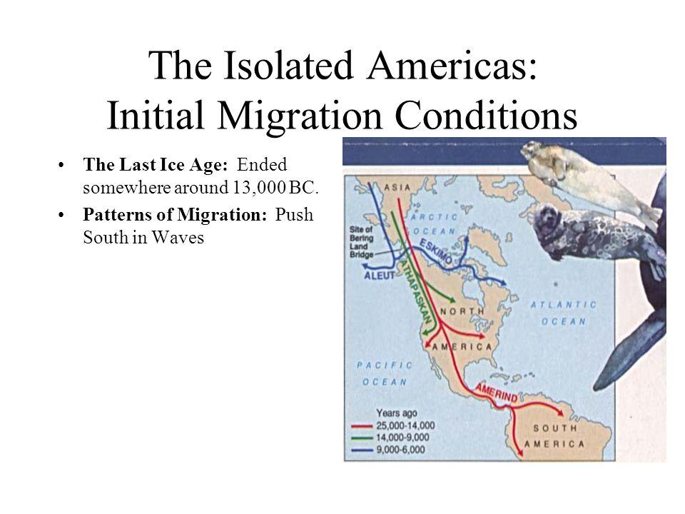 The Isolated Americas: Initial Migration Conditions The Last Ice Age: Ended somewhere around 13,000 BC.