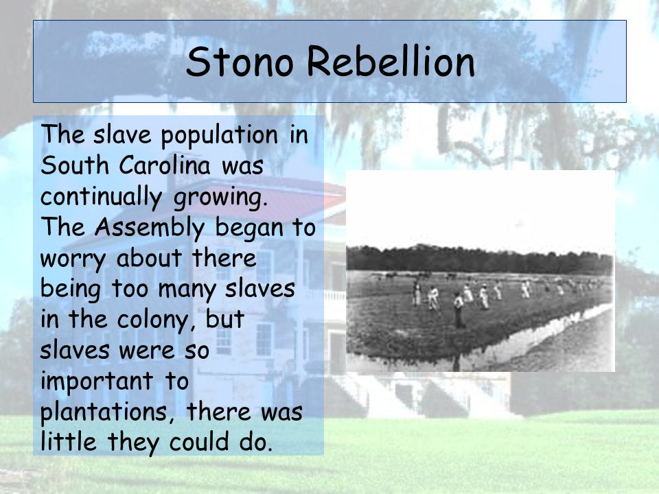 Stono Rebellion The slave population in South Carolina was continually growing. The Assembly began to worry about there being too many slaves in the c
