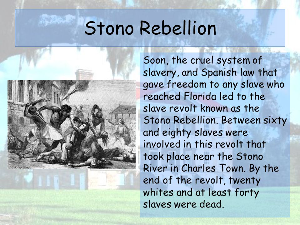 Stono Rebellion Soon, the cruel system of slavery, and Spanish law that gave freedom to any slave who reached Florida led to the slave revolt known as