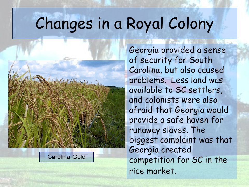 Changes in a Royal Colony Georgia provided a sense of security for South Carolina, but also caused problems. Less land was available to SC settlers, a