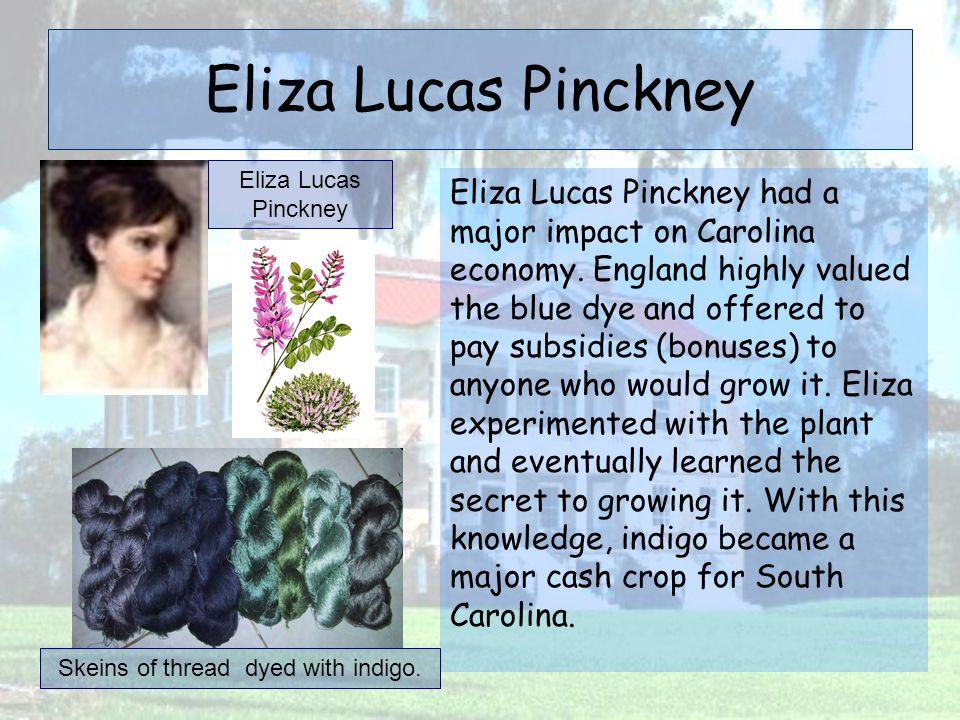 Eliza Lucas Pinckney Eliza Lucas Pinckney had a major impact on Carolina economy. England highly valued the blue dye and offered to pay subsidies (bon