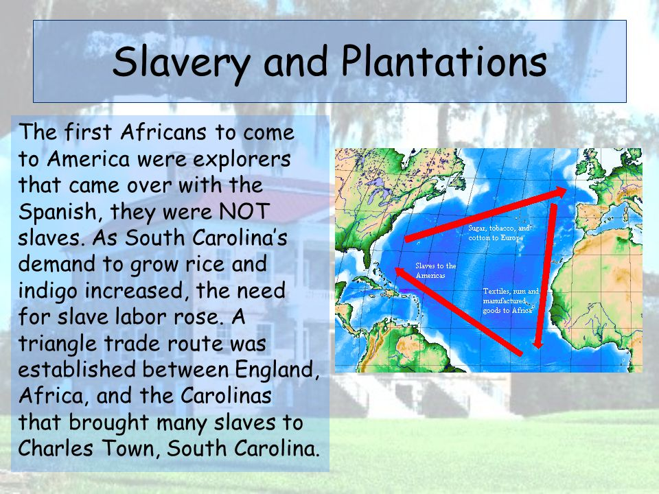 Slavery and Plantations The first Africans to come to America were explorers that came over with the Spanish, they were NOT slaves. As South Carolina'