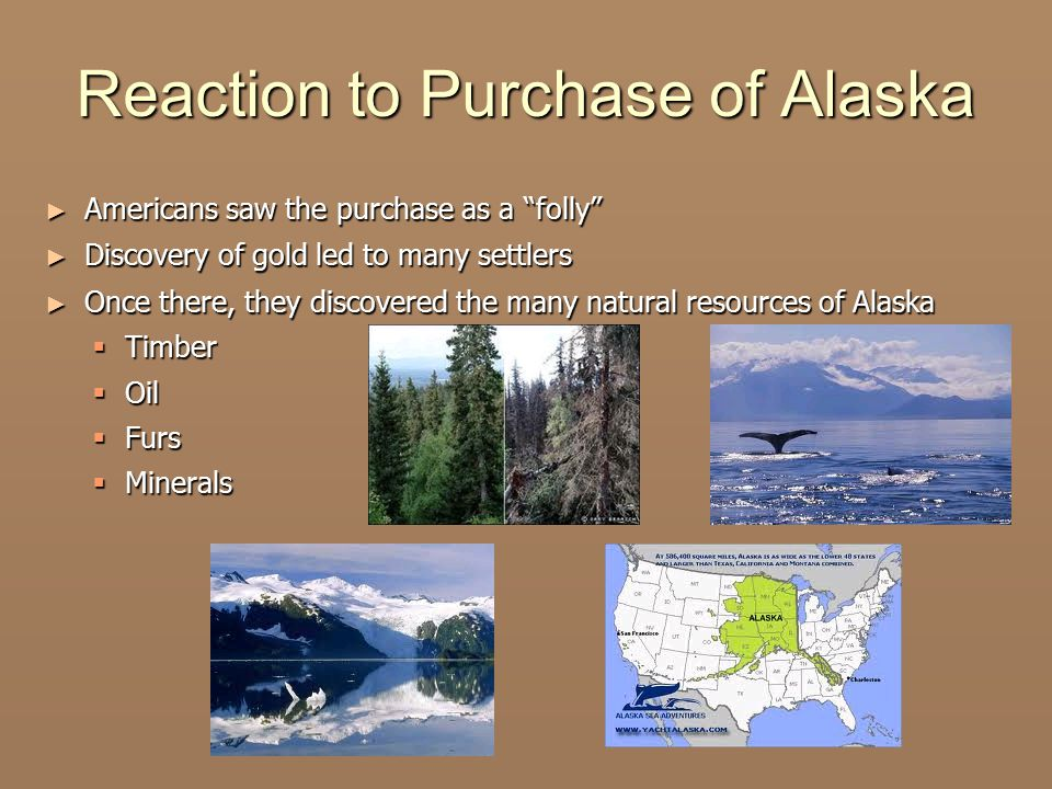 Reaction to Purchase of Alaska ► Americans saw the purchase as a folly ► Discovery of gold led to many settlers ► Once there, they discovered the many natural resources of Alaska  Timber  Oil  Furs  Minerals