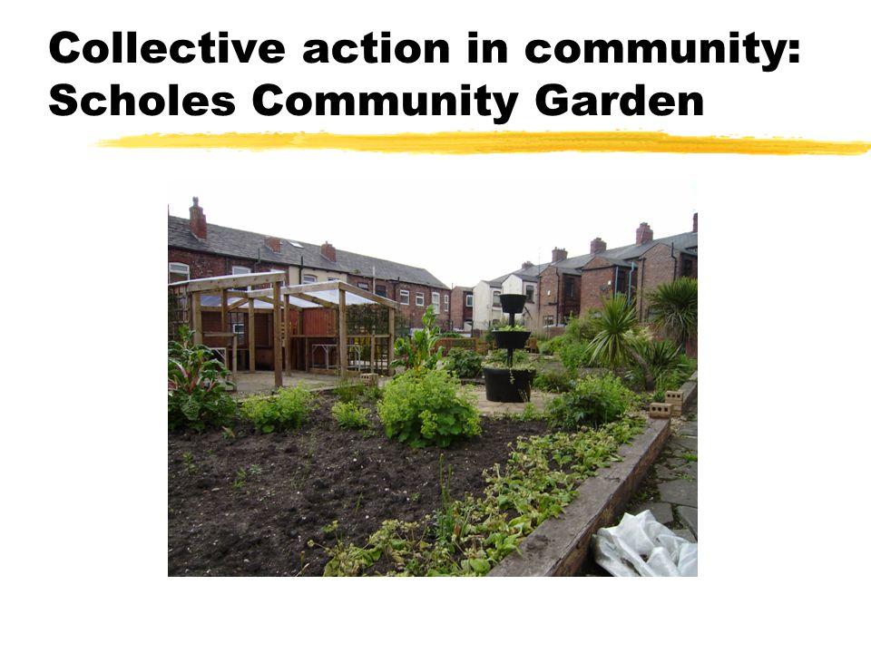 Collective action in community: Scholes Community Garden