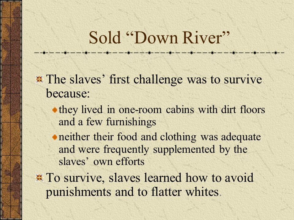 Sold Down River The slaves' first challenge was to survive because: they lived in one-room cabins with dirt floors and a few furnishings neither their food and clothing was adequate and were frequently supplemented by the slaves' own efforts To survive, slaves learned how to avoid punishments and to flatter whites.