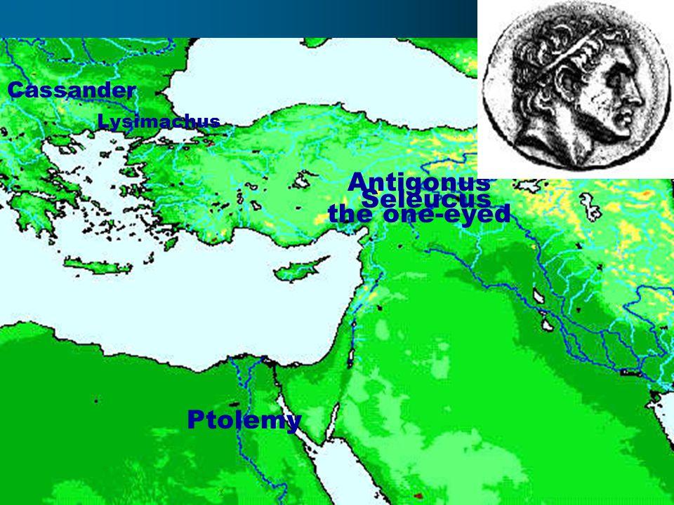 Ptolemy Antigonus the one-eyed Cassander Seleucus Lysimachus