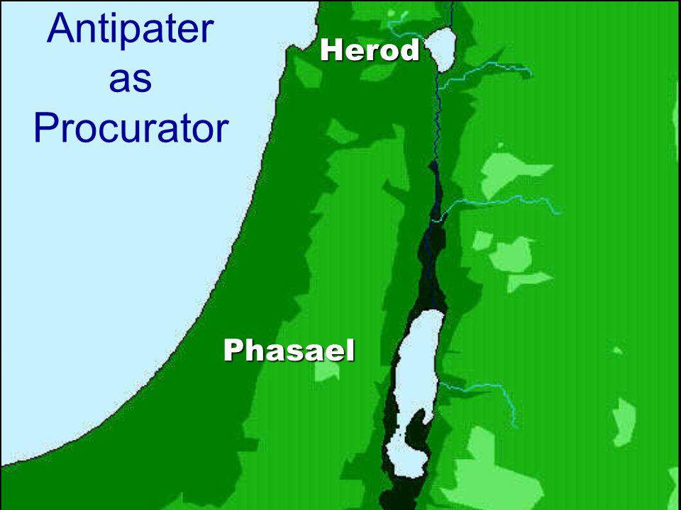 Antipater as Procurator Phasael Herod