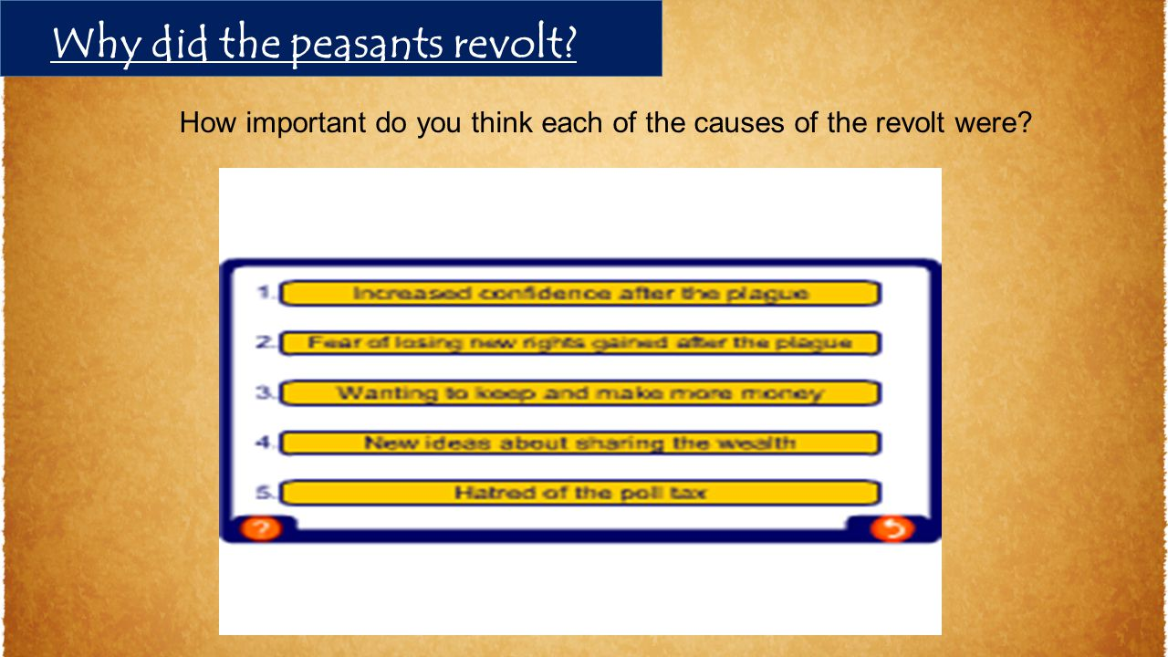 How important do you think each of the causes of the revolt were? Why did the peasants revolt?