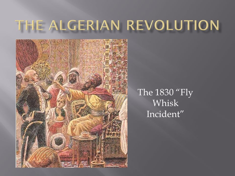 The 1830 Fly Whisk Incident