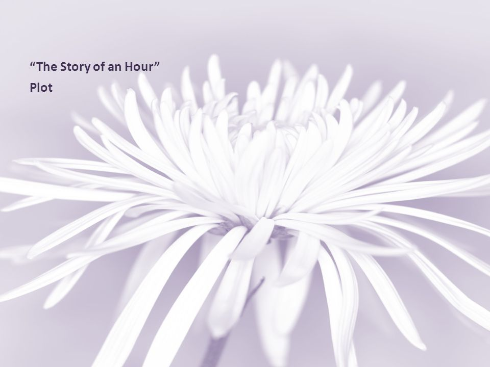"""""""The Story of an Hour"""" Plot"""