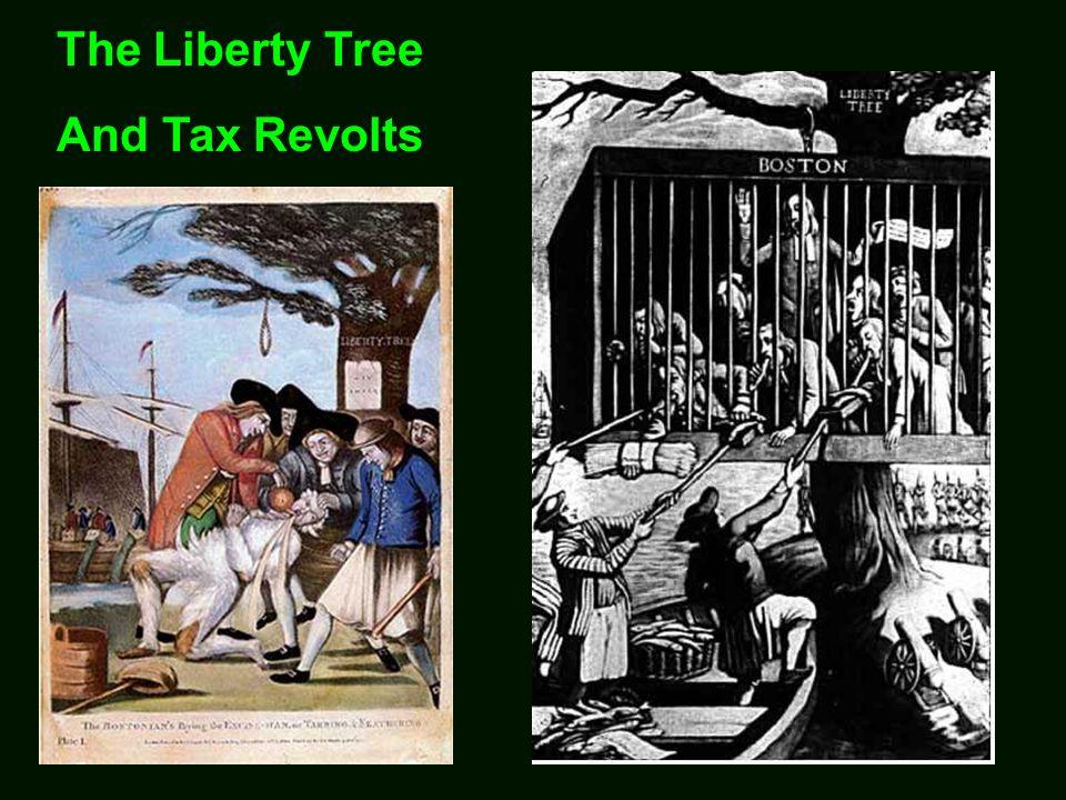 Tom Paine and Common Sense
