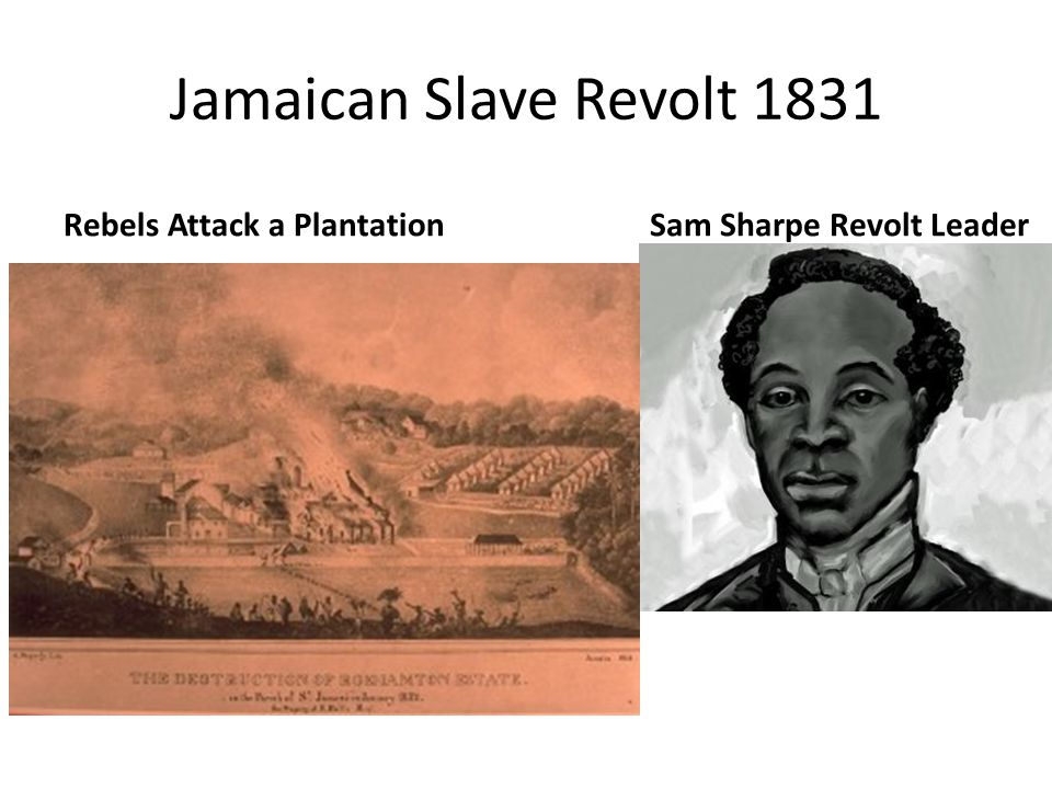 Jamaican Slave Revolt 1831 Rebels Attack a PlantationSam Sharpe Revolt Leader
