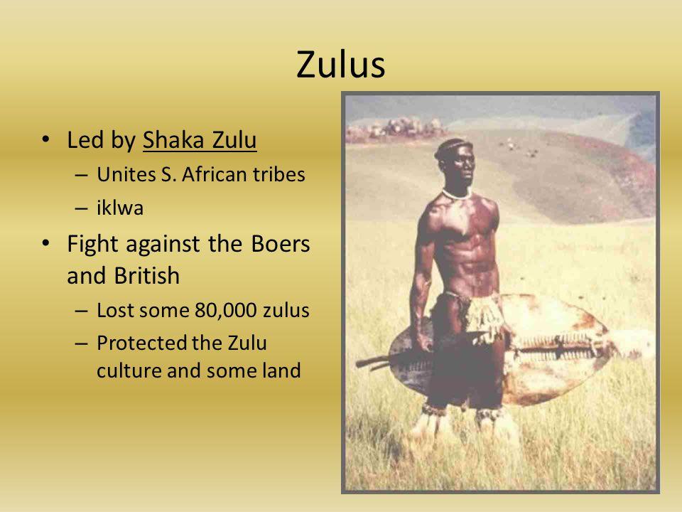 Zulus Led by Shaka Zulu – Unites S.