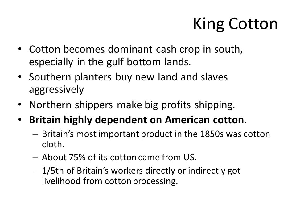 King Cotton Cotton becomes dominant cash crop in south, especially in the gulf bottom lands. Southern planters buy new land and slaves aggressively No