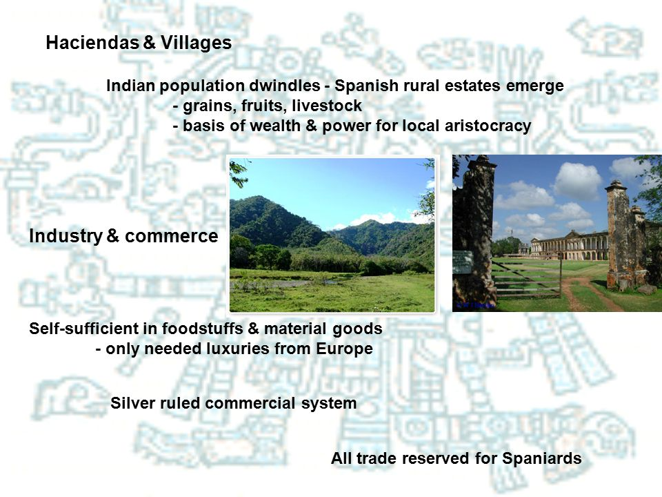 Haciendas & Villages Indian population dwindles - Spanish rural estates emerge - grains, fruits, livestock - basis of wealth & power for local aristoc