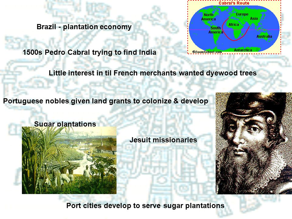 Brazil - plantation economy 1500s Pedro Cabral trying to find India Little interest in til French merchants wanted dyewood trees Portuguese nobles giv