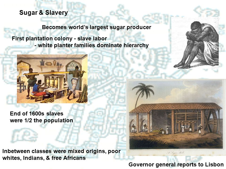 Sugar & Slavery Becomes world's largest sugar producer First plantation colony - slave labor - white planter families dominate hierarchy End of 1600s