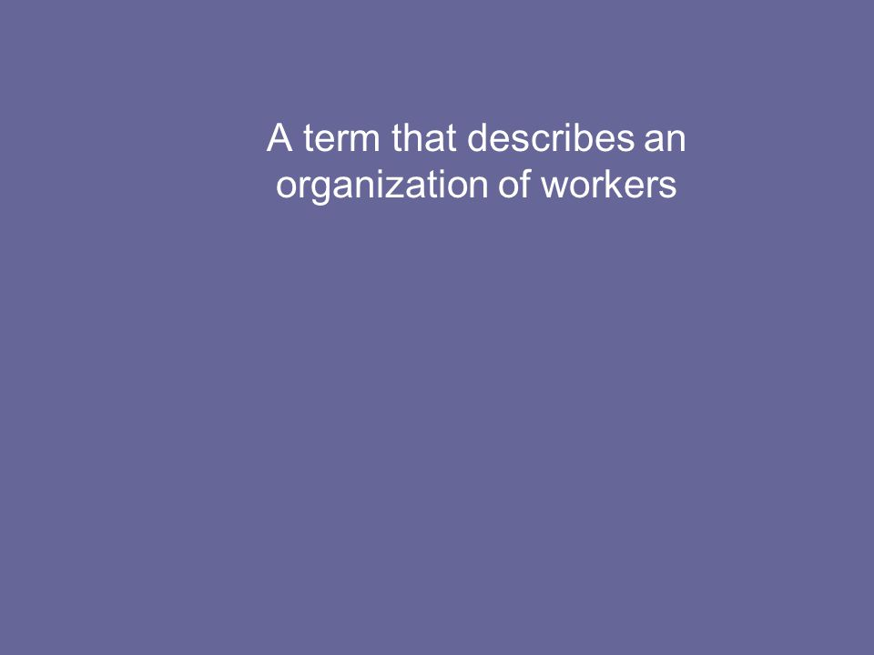 A term that describes an organization of workers