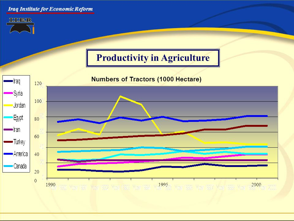 Iraq Institute for Economic Reform 1990 1995 2000 Numbers of Tractors (1000 Hectare) 120 100 80 60 40 20 0 Productivity in Agriculture