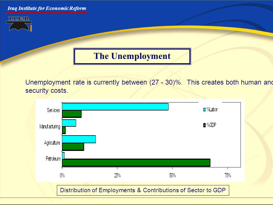 Iraq Institute for Economic Reform The Unemployment Unemployment rate is currently between (27 - 30)%.