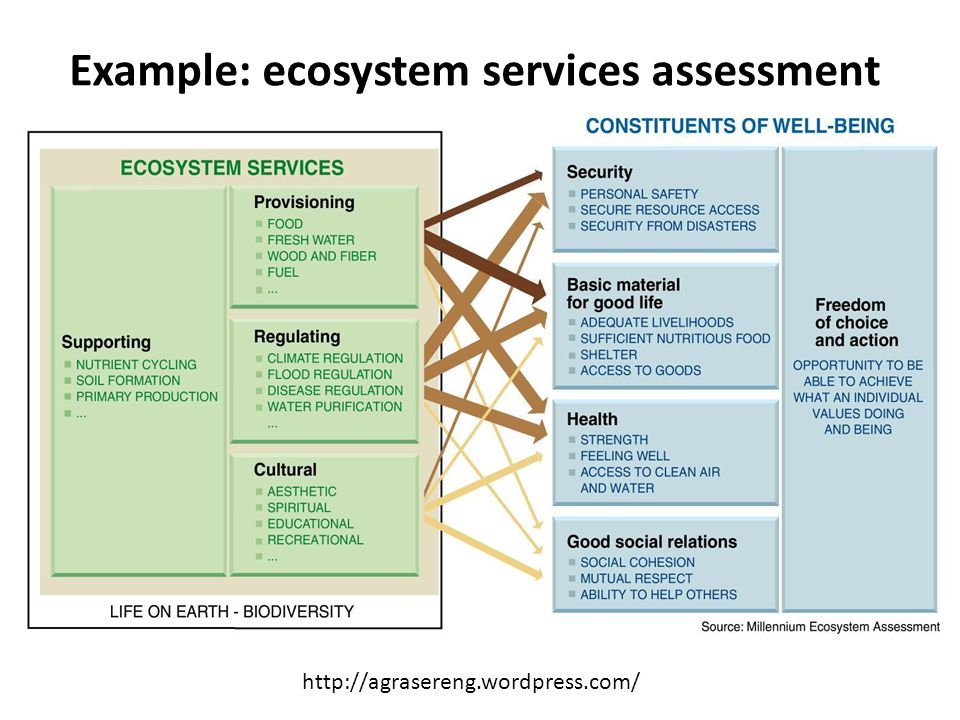 Example: ecosystem services assessment http://agrasereng.wordpress.com/