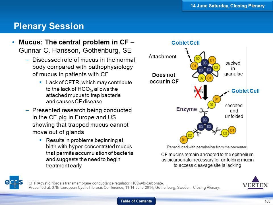 168 Goblet Cell Does not occur in CF Enzyme Attachment packed in granulae secreted and unfolded Plenary Session Mucus: The central problem in CF – Gun