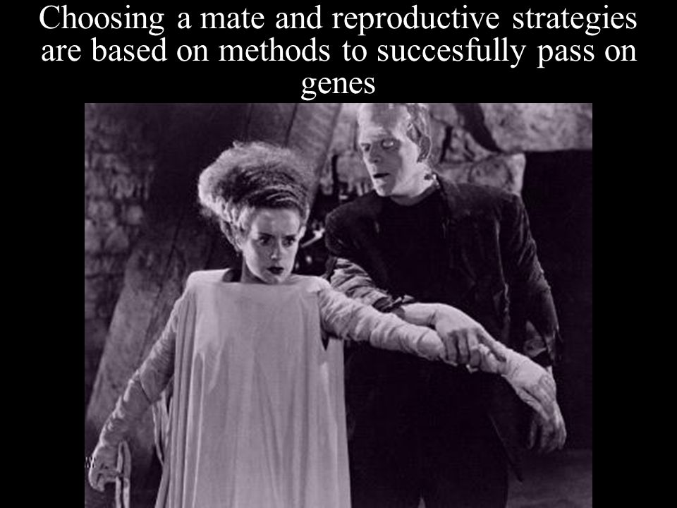 Choosing a mate and reproductive strategies are based on methods to succesfully pass on genes