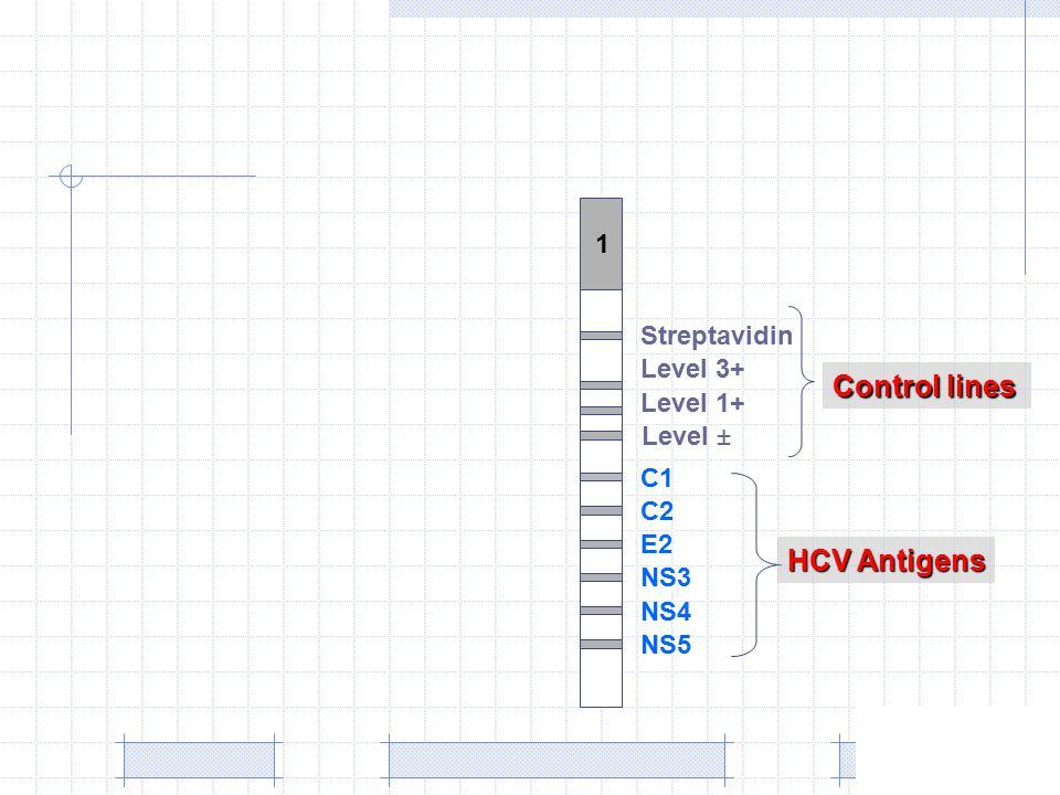 1 Level 3+ C1 C2 E2 NS3 NS4 NS5 Streptavidin Level 1+ ±Level Control lines HCV Antigens