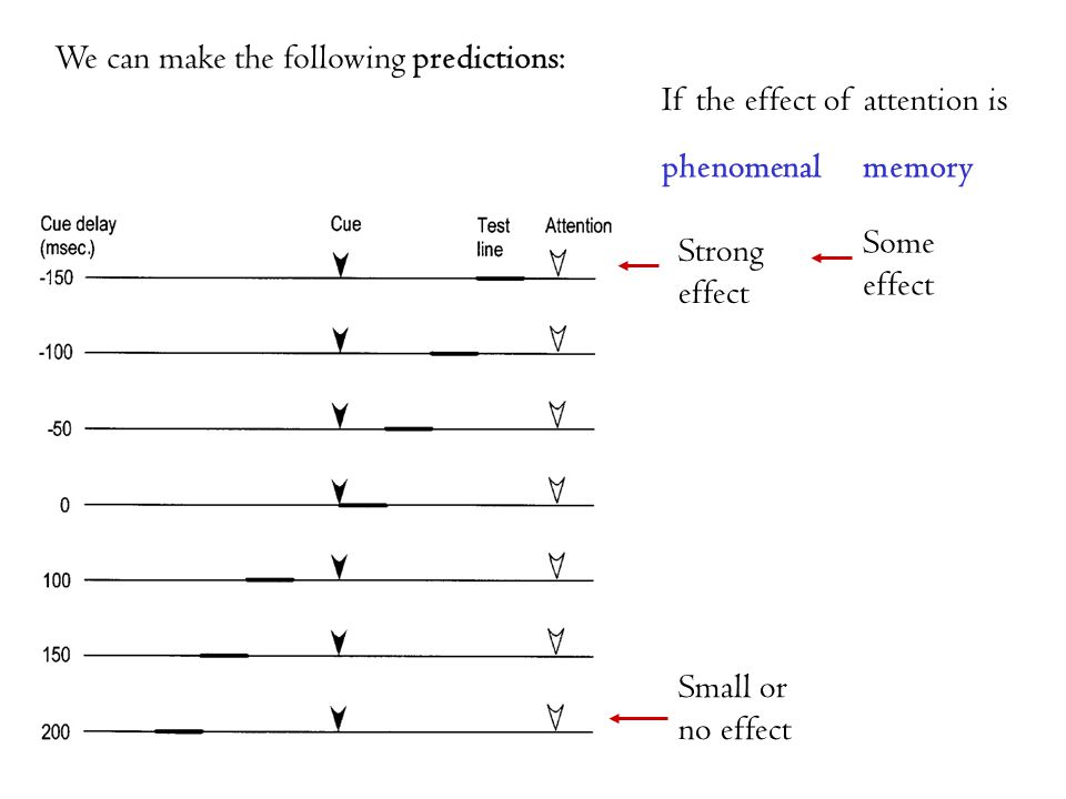 We can make the following predictions: Strong effect Small or no effect Some effect If the effect of attention is phenomenalmemory