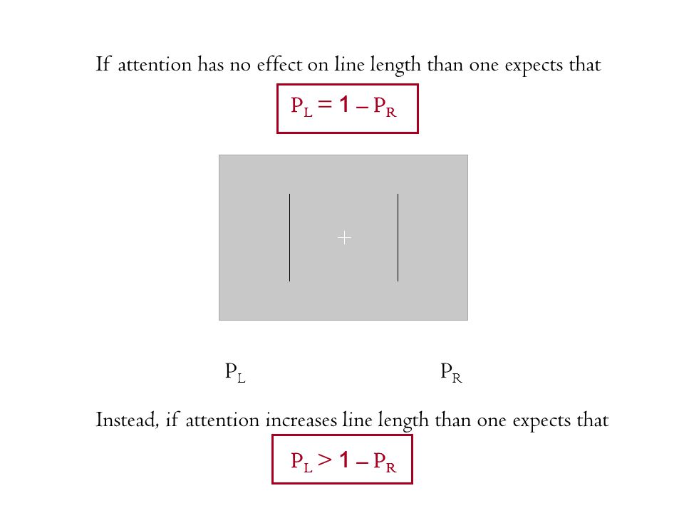 PLPL PRPR If attention has no effect on line length than one expects that P L = 1 – P R Instead, if attention increases line length than one expects t