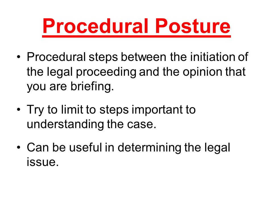 Procedural steps between the initiation of the legal proceeding and the opinion that you are briefing.