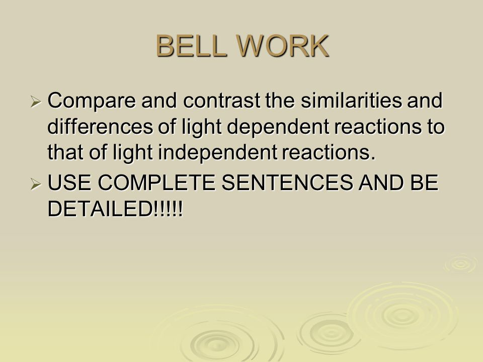 BELL WORK  Compare and contrast the similarities and differences of light dependent reactions to that of light independent reactions.  USE COMPLETE