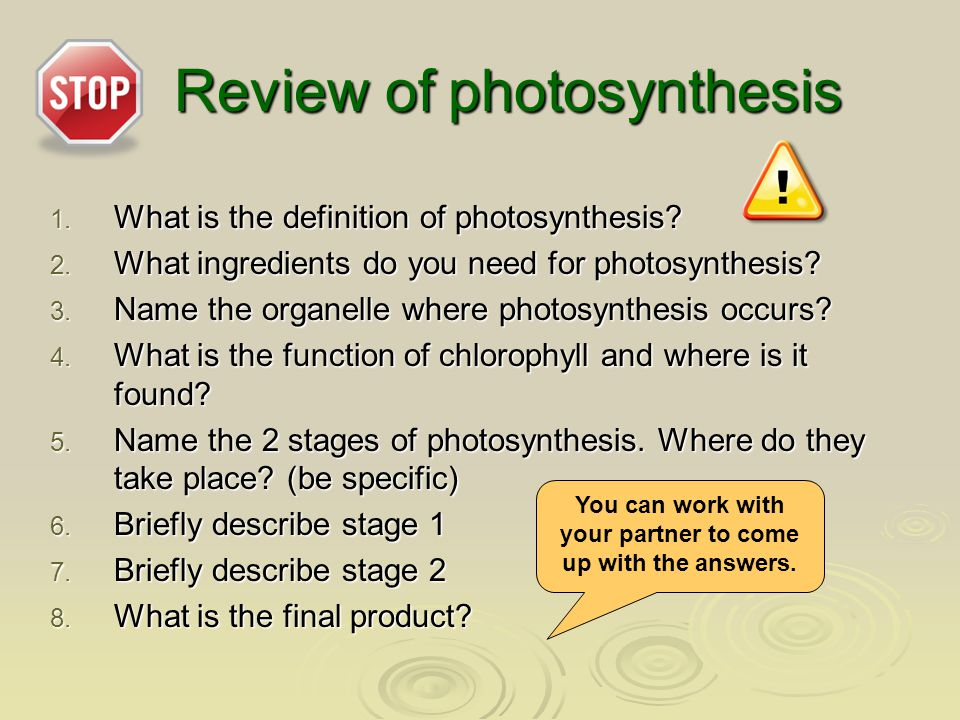 Review of photosynthesis 1.What is the definition of photosynthesis.