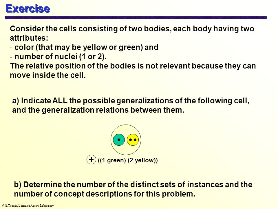  G.Tecuci, Learning Agents Laboratory Consider the cells consisting of two bodies, each body having two attributes: - color (that may be yellow or green) and - number of nuclei (1 or 2).