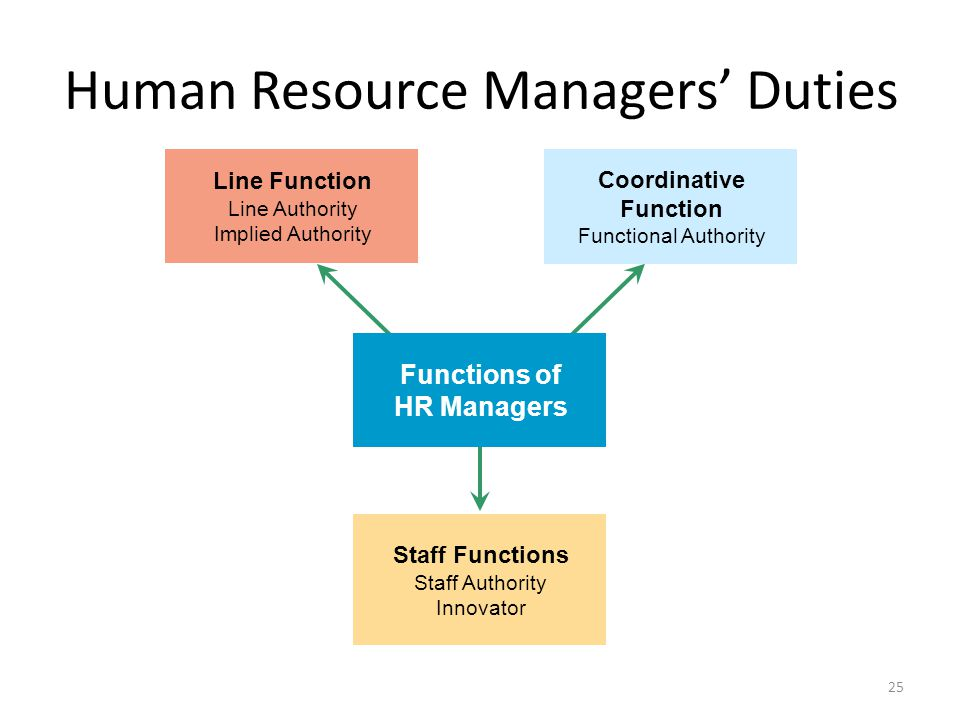 25 Human Resource Managers' Duties Functions of HR Managers Line Function Line Authority Implied Authority Staff Functions Staff Authority Innovator C
