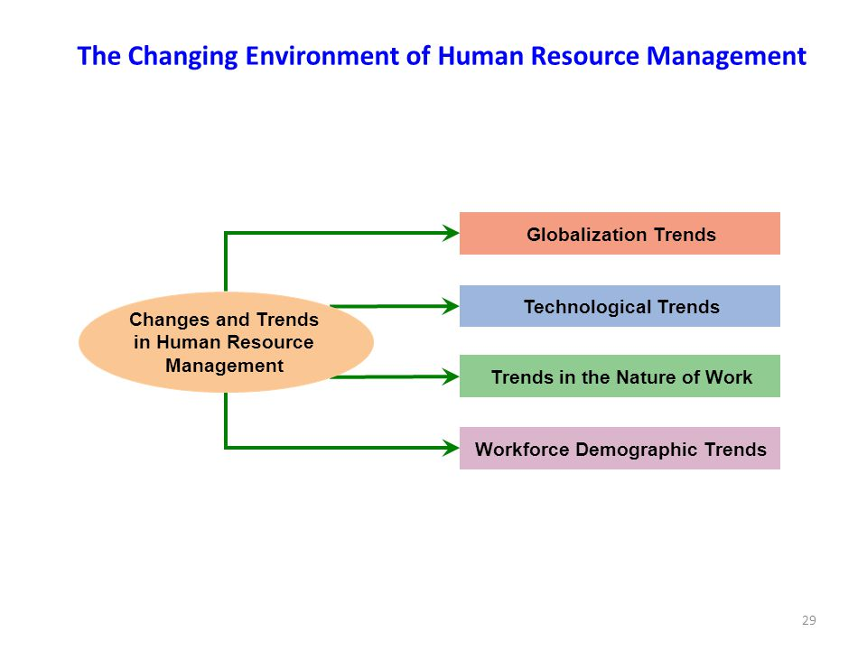 29 Globalization Trends Technological Trends Trends in the Nature of Work Workforce Demographic Trends Changes and Trends in Human Resource Management